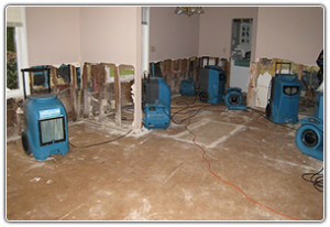 water damage cleanup tempe